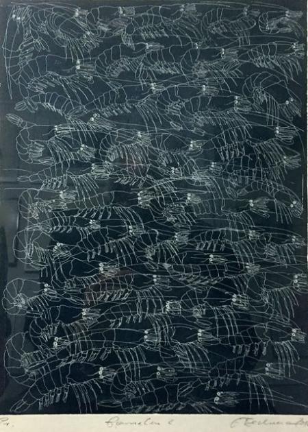 Otto Beckmann, Garnelen 2, 2012, Radierung Pr., 33x25cm, 210,-€, Galerie Stexwig