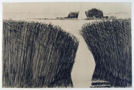 Otto Beckmann, Schilf, 2012, Radierung e.a., 32,8x49,7cm, 340,-€, Galerie Stexwig